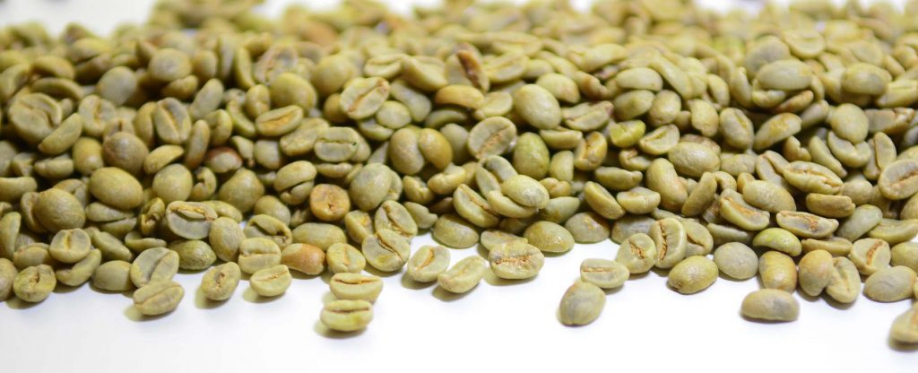 Qu'est-ce que le café vert ? | Brûlerie des Monts